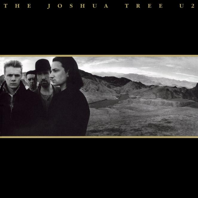 the-joshua-tree-5