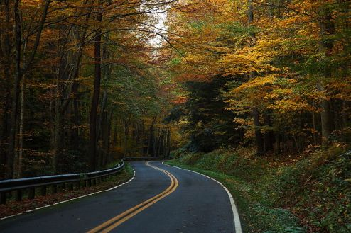 800px-West-virginia-winding-autumn-trees-country-road_-_West_Virginia_-_ForestWander