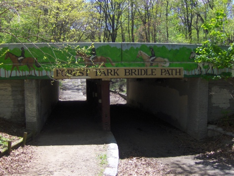 Forest_Park_Bridle_Path_(498736727)