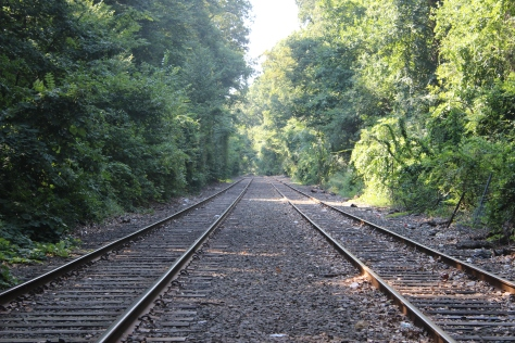 Train_Tracks,_LIRR.JPG
