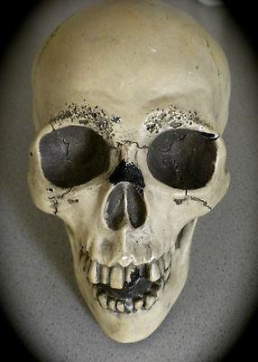vintage-randotti-glow-dark-skull-847_1_f10fe43d30381f3466b5fab274fd651c