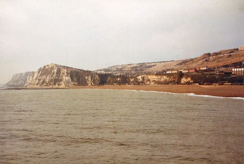 Shakespeare_cliff_and_Aycliff,_Dover_-_geograph.org.uk_-_308573