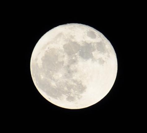 Super-Moon-2_11-14-2016