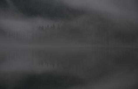 At_Killarney_Lake_(8324324327)