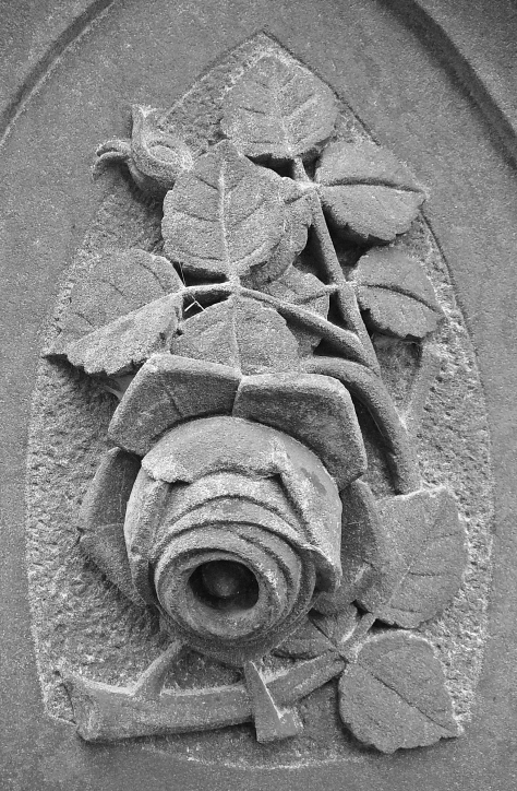 Stone_Rose