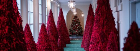 white-house-christmas-trees-red-2018