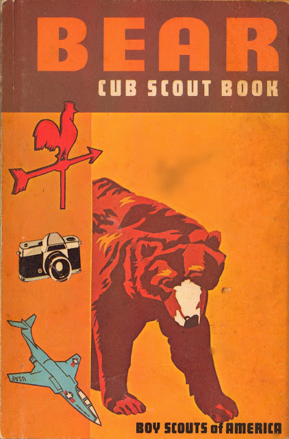 boy scout book cover