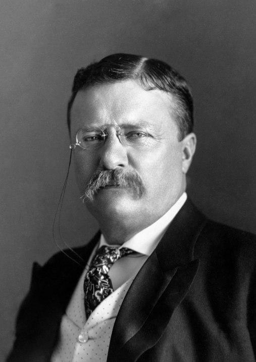 President_Roosevelt_-_Pach_Bros