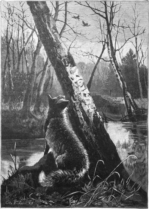 Die_Gartenlaube_(1889)_b_221