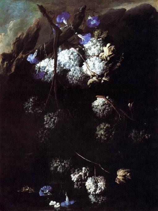 Belvedere,_Abate_Andrea_-_Flowers_-_c._1680