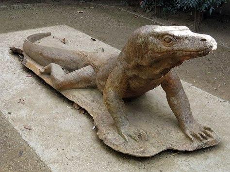800px-174_Zoo_de_Barcelona,_espai_Terra_de_Dragons,_reproducció_d'un_dragó_de_Komodo