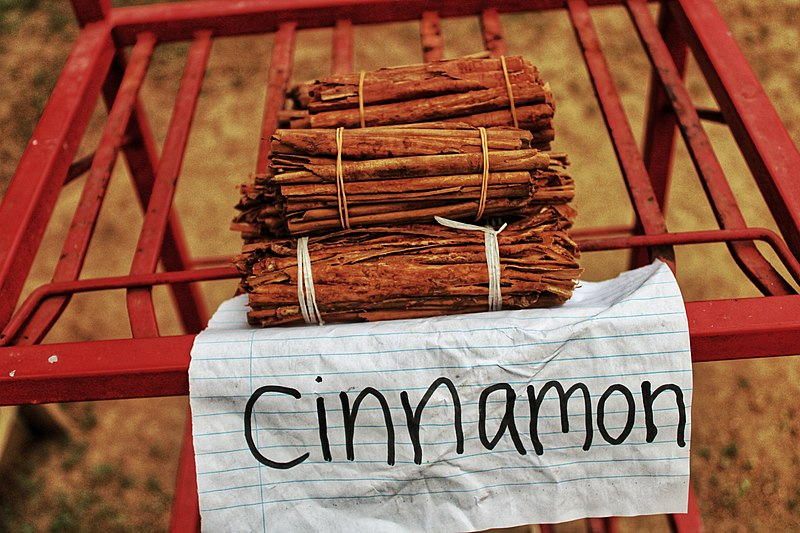 800px-Cinnamon_srilanka